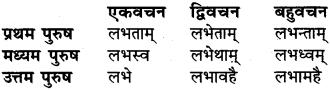 RBSE Class 6 Sanskrit व्याकरण धातु-रूपम् 52