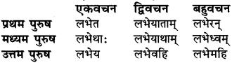 RBSE Class 6 Sanskrit व्याकरण धातु-रूपम् 53