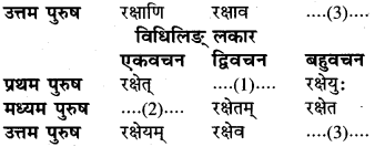RBSE Class 6 Sanskrit व्याकरण धातु-रूपम् 58