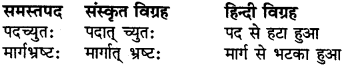 RBSE Class 6 Sanskrit व्याकरण समास 5