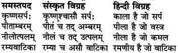 RBSE Class 6 Sanskrit व्याकरण समास 8