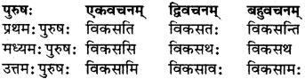 RBSE Class 7 Sanskrit परिशिष्टम् 24