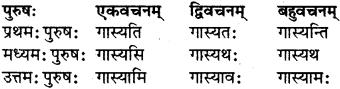 RBSE Class 7 Sanskrit परिशिष्टम् 30