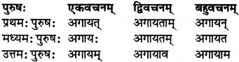 RBSE Class 7 Sanskrit परिशिष्टम् 31
