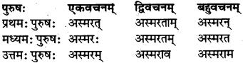 RBSE Class 7 Sanskrit परिशिष्टम् 43
