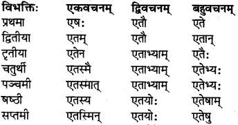 RBSE Class 7 Sanskrit परिशिष्टम् 7