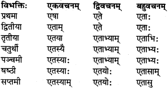 RBSE Class 7 Sanskrit परिशिष्टम् 8