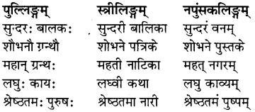 RBSE Class 7 Sanskrit व्याकरण विशेषण प्रकरणम् 1