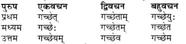 RBSE Class 7 Sanskrit व्याकरण शब्द रूप प्रकरणम् 100