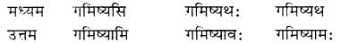RBSE Class 7 Sanskrit व्याकरण शब्द रूप प्रकरणम् 47