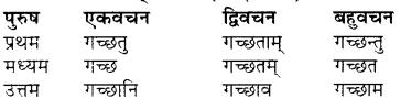 RBSE Class 7 Sanskrit व्याकरण शब्द रूप प्रकरणम् 48
