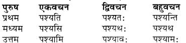 RBSE Class 7 Sanskrit व्याकरण शब्द रूप प्रकरणम् 50