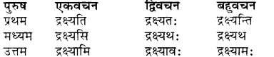 RBSE Class 7 Sanskrit व्याकरण शब्द रूप प्रकरणम् 52