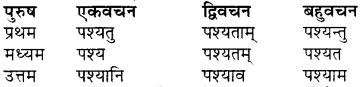 RBSE Class 7 Sanskrit व्याकरण शब्द रूप प्रकरणम् 53