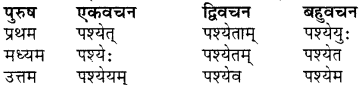 RBSE Class 7 Sanskrit व्याकरण शब्द रूप प्रकरणम् 54