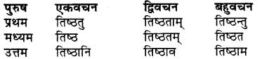 RBSE Class 7 Sanskrit व्याकरण शब्द रूप प्रकरणम् 62