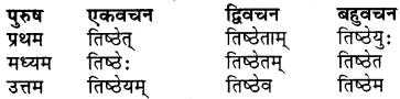 RBSE Class 7 Sanskrit व्याकरण शब्द रूप प्रकरणम् 63