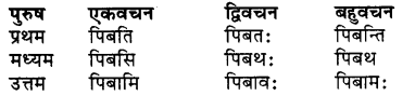 RBSE Class 7 Sanskrit व्याकरण शब्द रूप प्रकरणम् 64