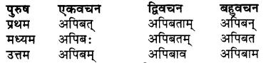 RBSE Class 7 Sanskrit व्याकरण शब्द रूप प्रकरणम् 65