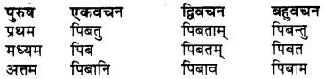 RBSE Class 7 Sanskrit व्याकरण शब्द रूप प्रकरणम् 67