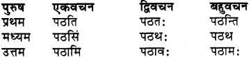 RBSE Class 7 Sanskrit व्याकरण शब्द रूप प्रकरणम् 69