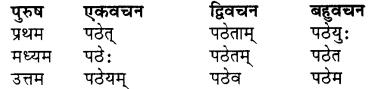 RBSE Class 7 Sanskrit व्याकरण शब्द रूप प्रकरणम् 74