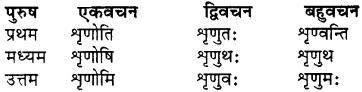 RBSE Class 7 Sanskrit व्याकरण शब्द रूप प्रकरणम् 75