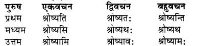 RBSE Class 7 Sanskrit व्याकरण शब्द रूप प्रकरणम् 77