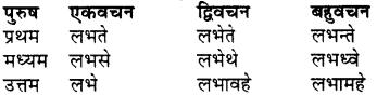 RBSE Class 7 Sanskrit व्याकरण शब्द रूप प्रकरणम् 80