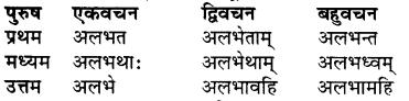 RBSE Class 7 Sanskrit व्याकरण शब्द रूप प्रकरणम् 81
