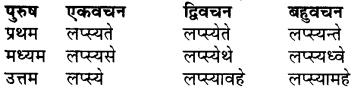 RBSE Class 7 Sanskrit व्याकरण शब्द रूप प्रकरणम् 82