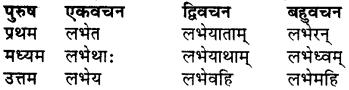 RBSE Class 7 Sanskrit व्याकरण शब्द रूप प्रकरणम् 84