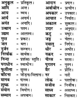 RBSE Class 8 Hindi व्याकरण विलोम 1