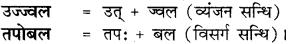 RBSE Class 8 Hindi व्याकरण सन्धि 4