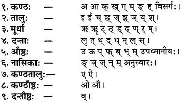 RBSE Class 8 Sanskrit परिशिष्टम् वर्णोच्चारणस्थानानि - 2