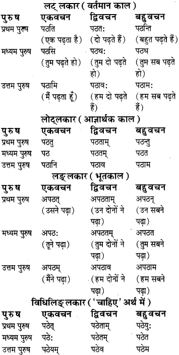 RBSE Class 8 Sanskrit व्याकरण धातु-रूपाणि - 1
