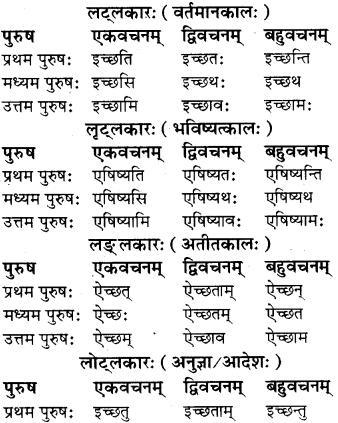 RBSE Class 8 Sanskrit व्याकरण धातु-रूपाणि - 10