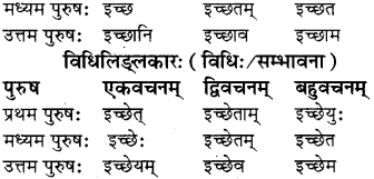 RBSE Class 8 Sanskrit व्याकरण धातु-रूपाणि - 11