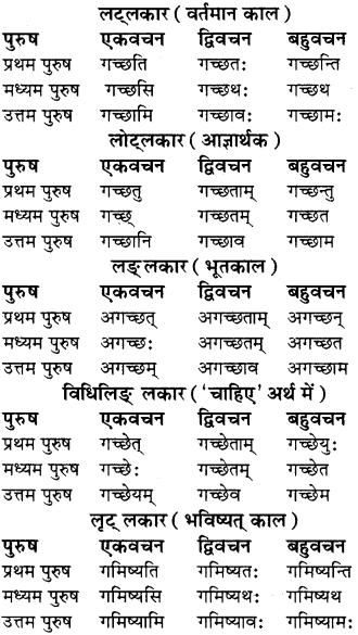 RBSE Class 8 Sanskrit व्याकरण धातु-रूपाणि - 12