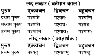 RBSE Class 8 Sanskrit व्याकरण धातु-रूपाणि - 13