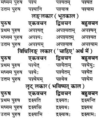 RBSE Class 8 Sanskrit व्याकरण धातु-रूपाणि - 14