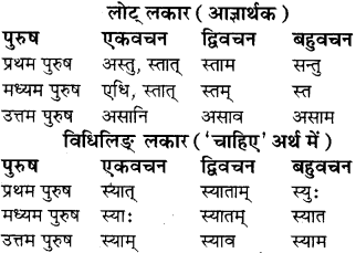 RBSE Class 8 Sanskrit व्याकरण धातु-रूपाणि - 18