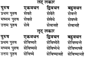 RBSE Class 8 Sanskrit व्याकरण धातु-रूपाणि - 19