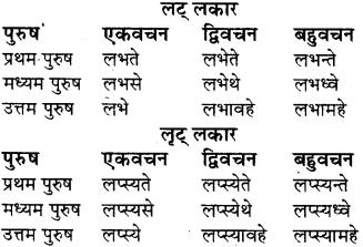 RBSE Class 8 Sanskrit व्याकरण धातु-रूपाणि - 20