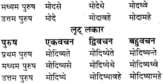 RBSE Class 8 Sanskrit व्याकरण धातु-रूपाणि - 22