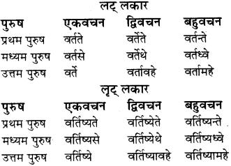 RBSE Class 8 Sanskrit व्याकरण धातु-रूपाणि - 24