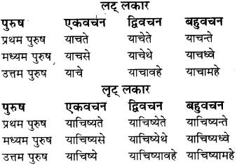 RBSE Class 8 Sanskrit व्याकरण धातु-रूपाणि - 25