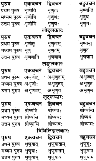 RBSE Class 8 Sanskrit व्याकरण धातु-रूपाणि - 4