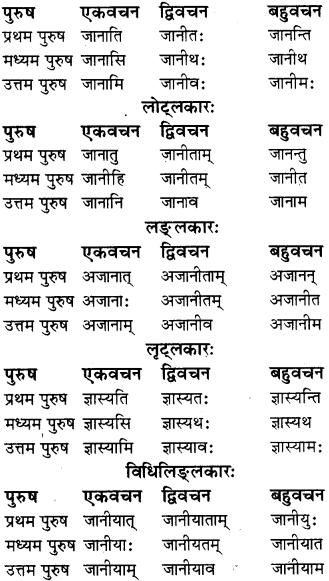 RBSE Class 8 Sanskrit व्याकरण धातु-रूपाणि - 7