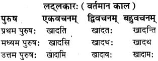 RBSE Class 8 Sanskrit व्याकरण धातु-रूपाणि - 8
